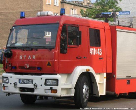 KMPSP Przemyśl: Przemyscy strażacy uczcili Narodowe Święto Niepodległości